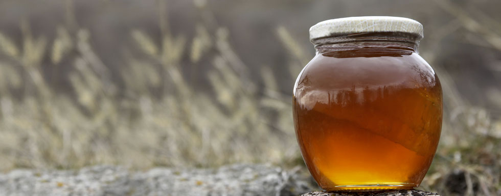 8-vanilla-agave-syrup-large