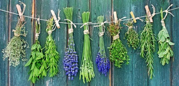 Come usare le erbe aromatiche in cucina